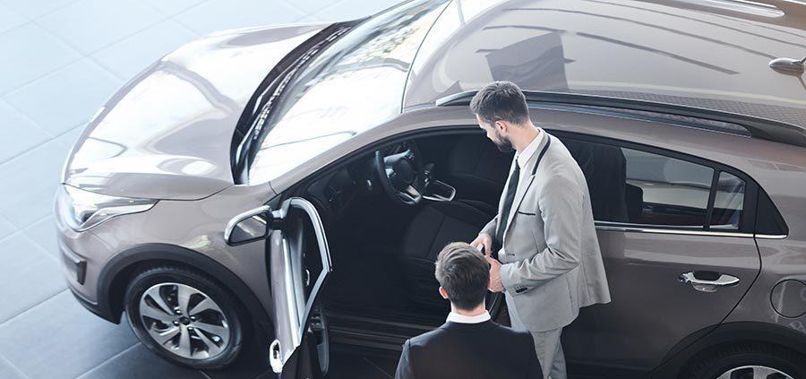 Automotive Business for Large Corporations