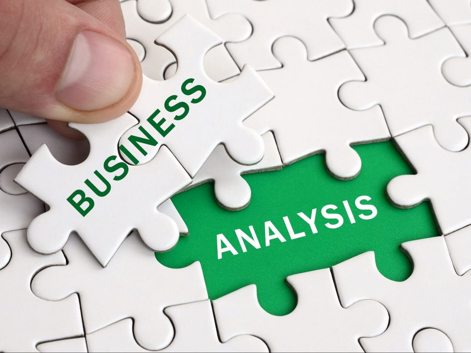 Business Analysis for Large Corporations