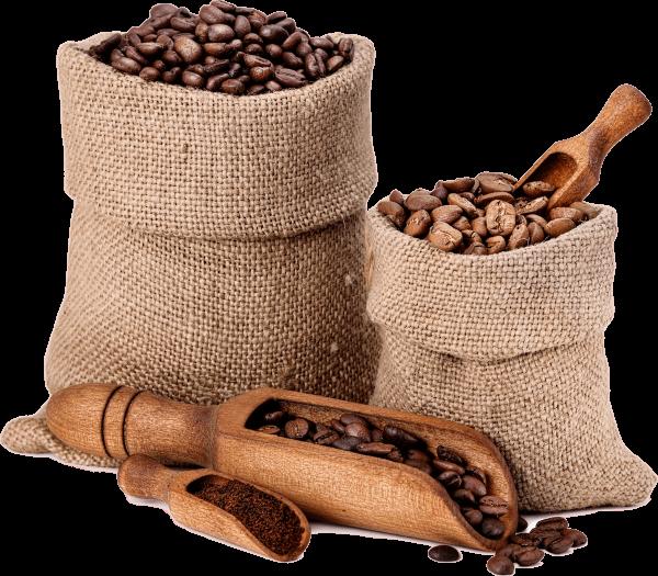 varieties-of-coffee-beans-P8XB6TB
